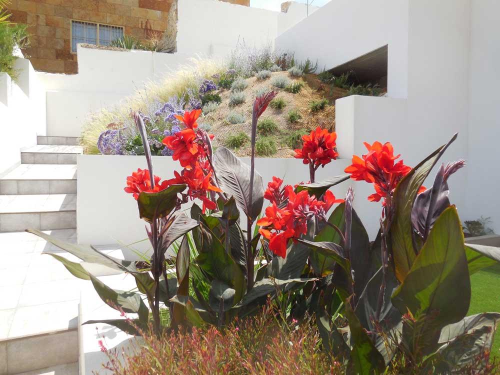 Un Jardín en Pendiente - (entreverde)